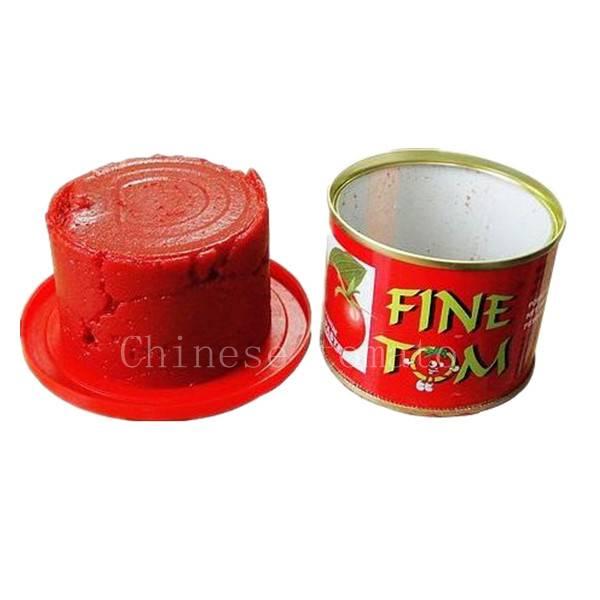 best gino tomato paste brands supplier
