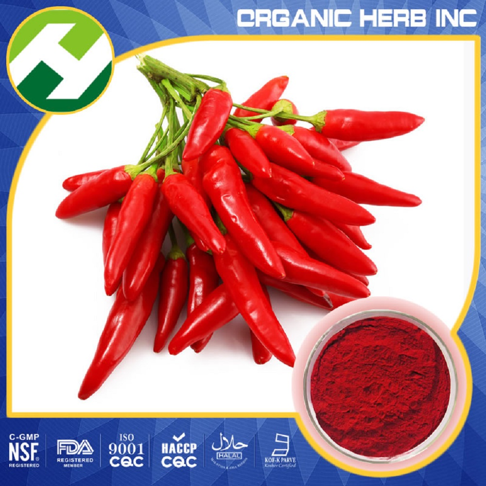 Paprika organic Pigment Red Color E200 / Capsaicin extract 95%