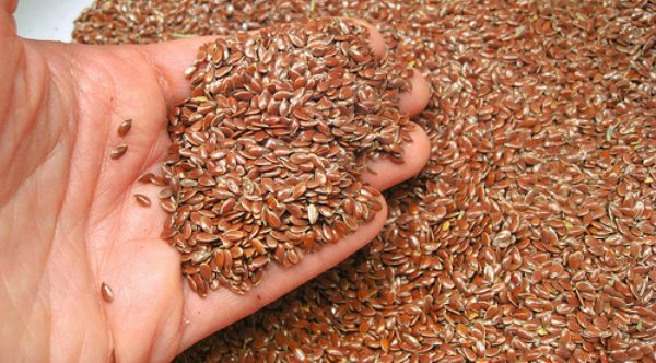 Flax seeds CIF China