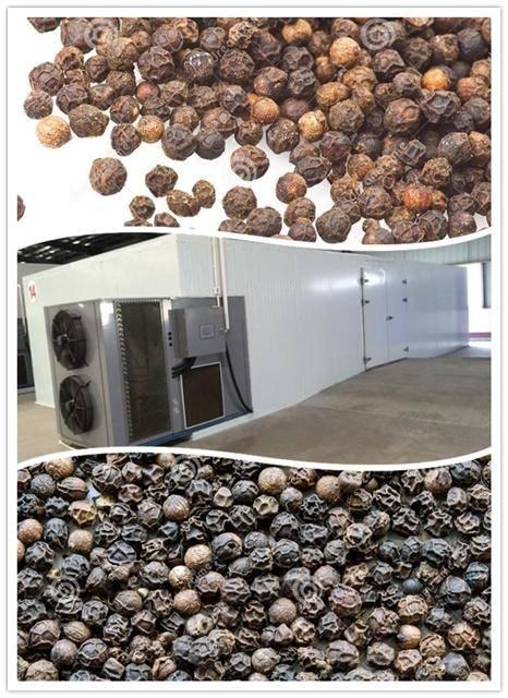 black pepper dryer|black pepper drying machine