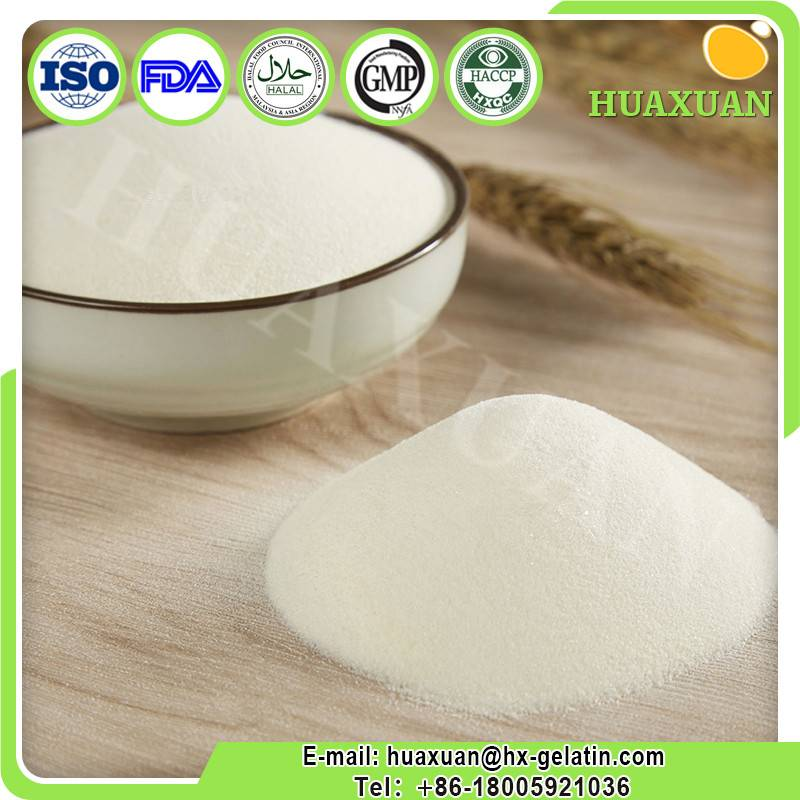 Industrial collagen manufacturer high quality collagen powder
