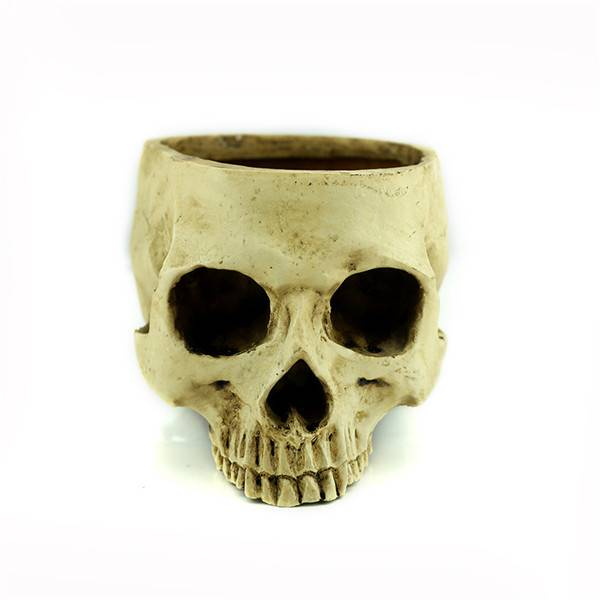 Human Skull Planter Skeleton Container Flowerpot HANDMADE Resin gray Gift