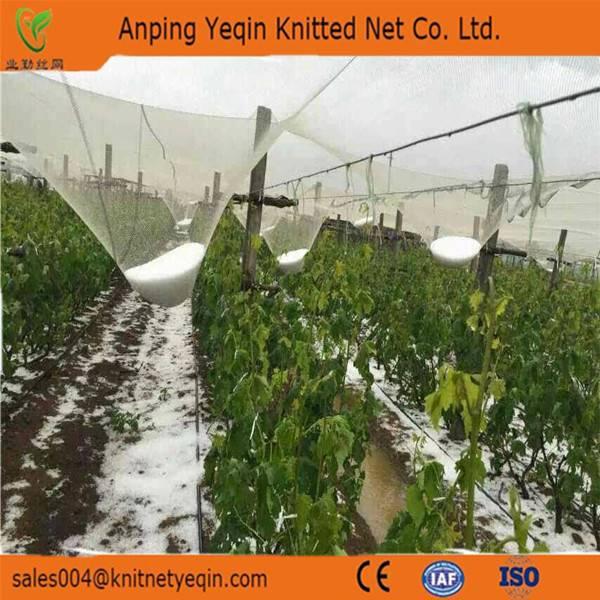 Yeqin wholesale anti hail nets