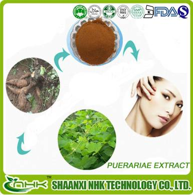 GMP Factory Supply high quality 100% Natural Kudzu Root Extract