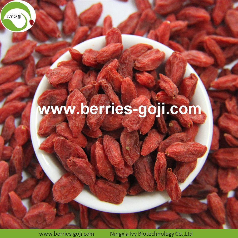 For Sale Super Food Dried Conventional Goji Berries