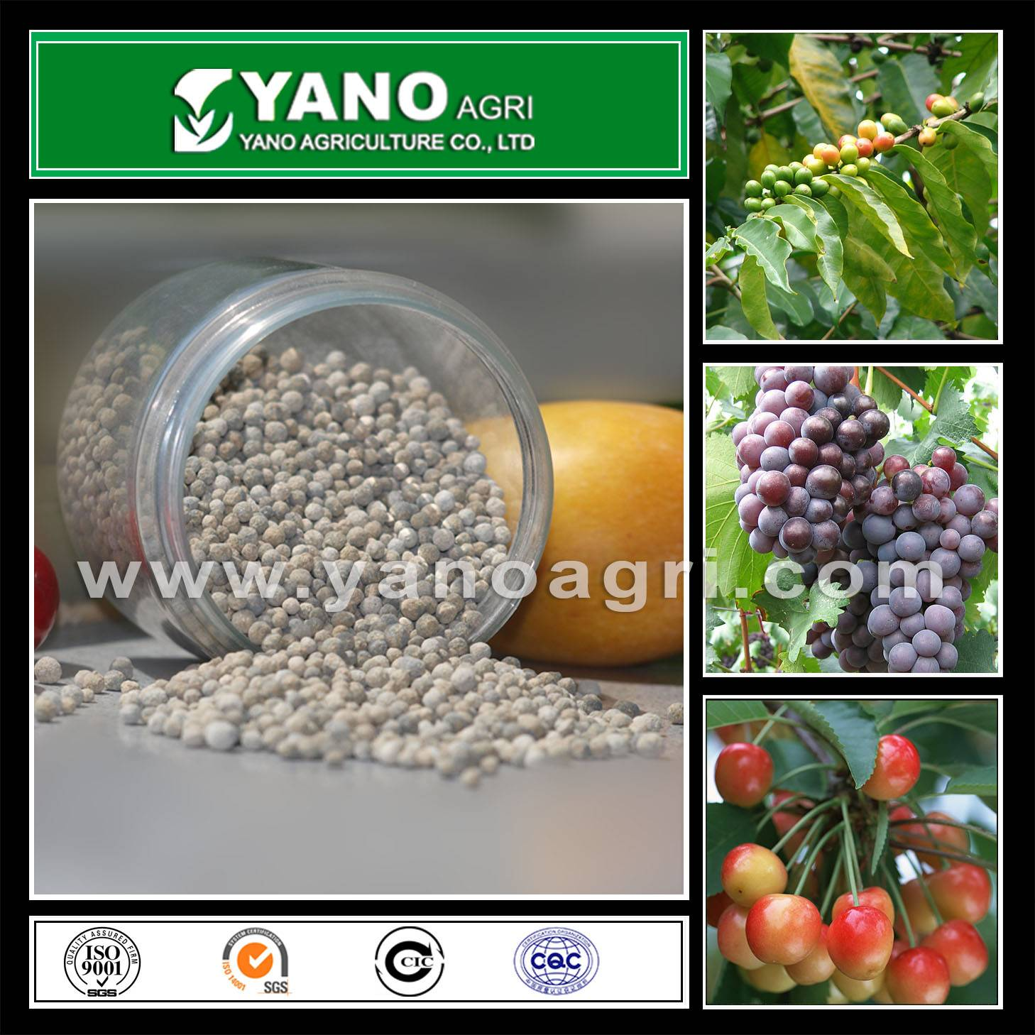 Micro Nutrients mixed fertilizer-MicroKey I