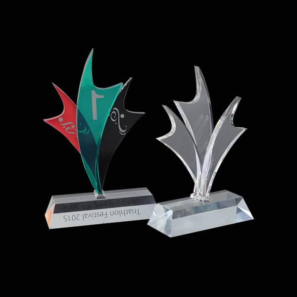 acrylic wards trophy