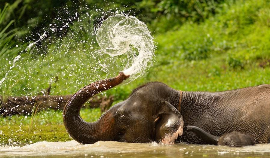 Laos tours and holiday packages