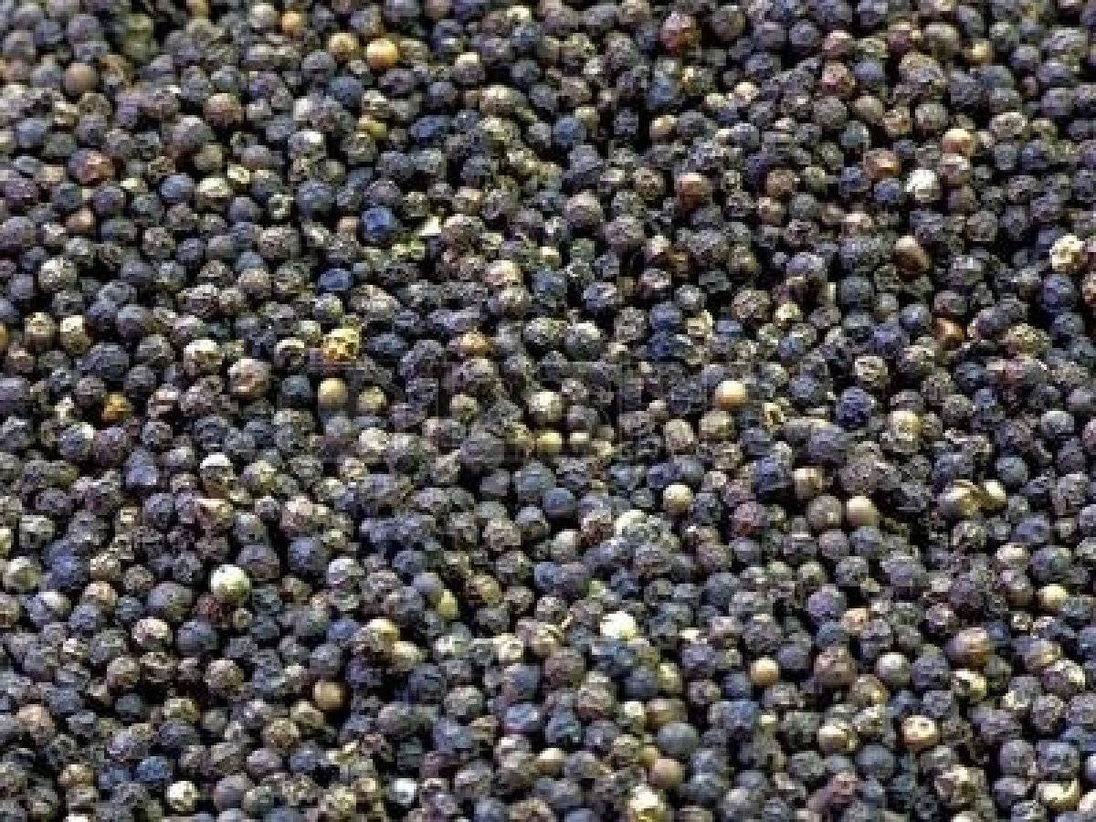 QUALITY BLACK PEPPER FOR SALE AT GOOD PRICES