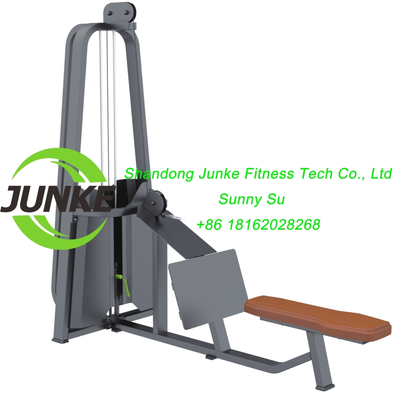 z633 long pull commercial fitness equipemnt gym equipment
