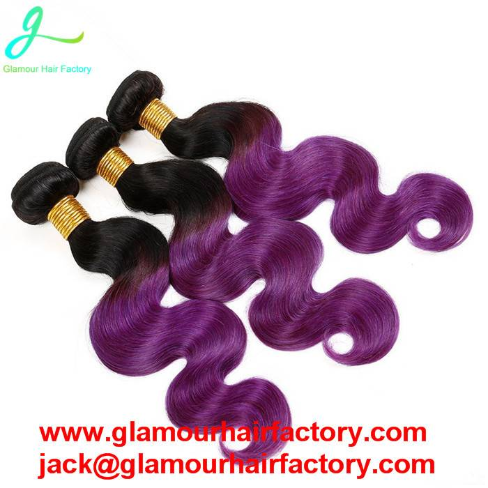 Ombre Brazilian Virgin Hair Body Wave Human Hair Extensions Two Tone 1B# Purple