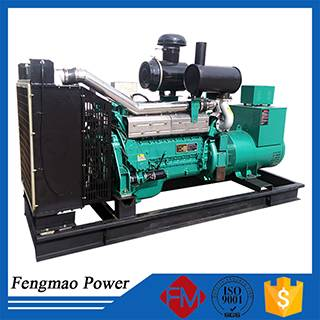 Water cooled diesel power generator