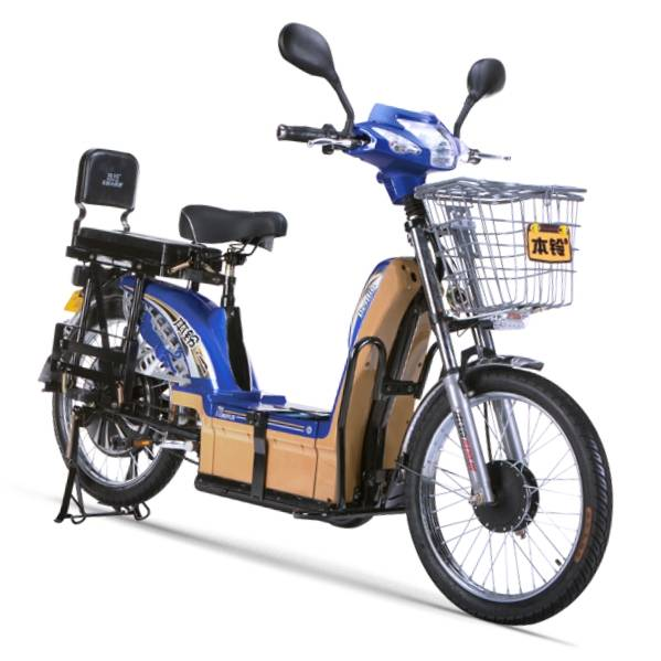 "60V20AH e-bike carry goods Pedal Assist"" Electric Powered Bicycles """