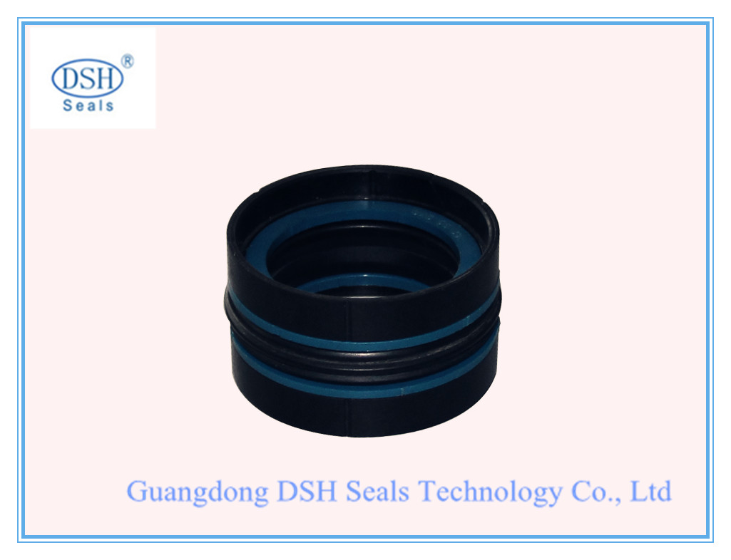 DDAS Compact Seal