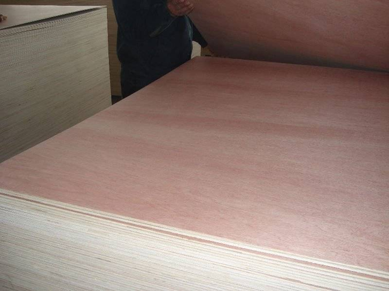 Packing plywood from China famous manufacturer