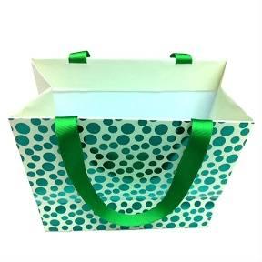 Fahion Leopard Paper Bags Supplier