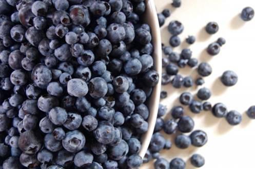 "IQFOrganic Bilberry Grade ""A"" (Vaccinium myrtillus)"