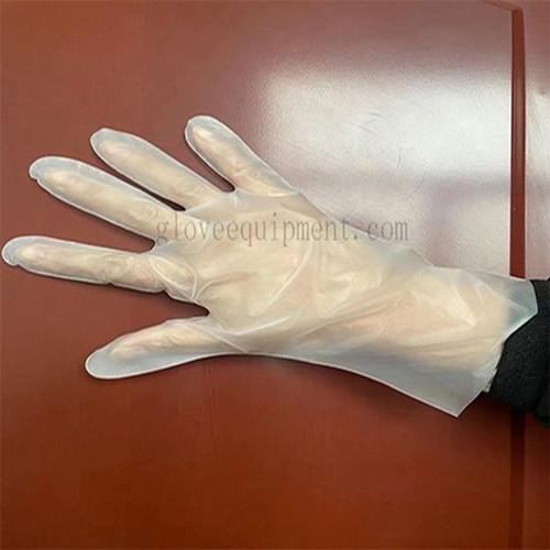 TPE GlovesDisposable Gloves SupplierFengwang Innovative gloves