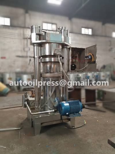 mango seed oil press machine/mango seed oil making machine/mango seed oil extruder