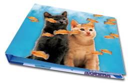3d lenticular cards , lenticular fans , lenticular printing , 3d Printing