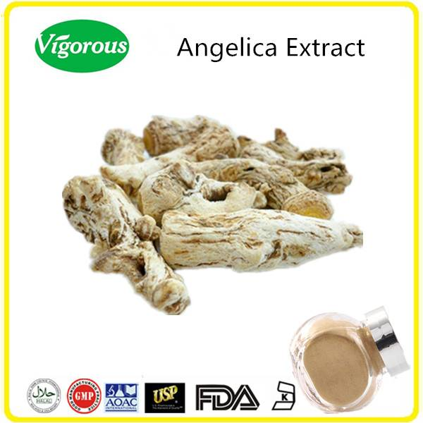 GMP manufacturer free samples 10:1 Ligustilide 1% natural angelica extract