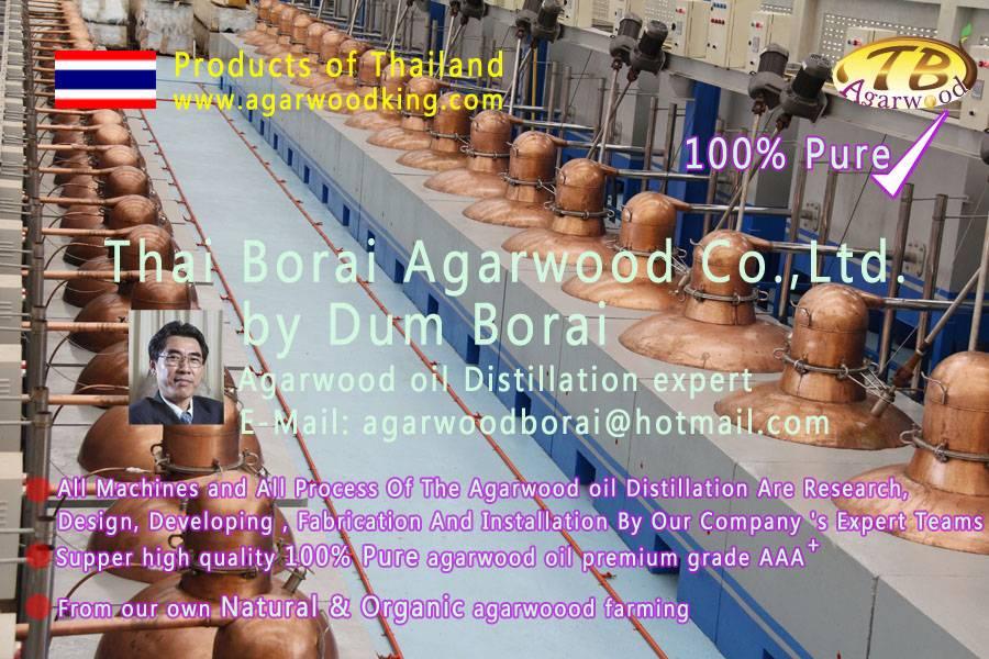 agarwood oil-alosewood-gaharu oil