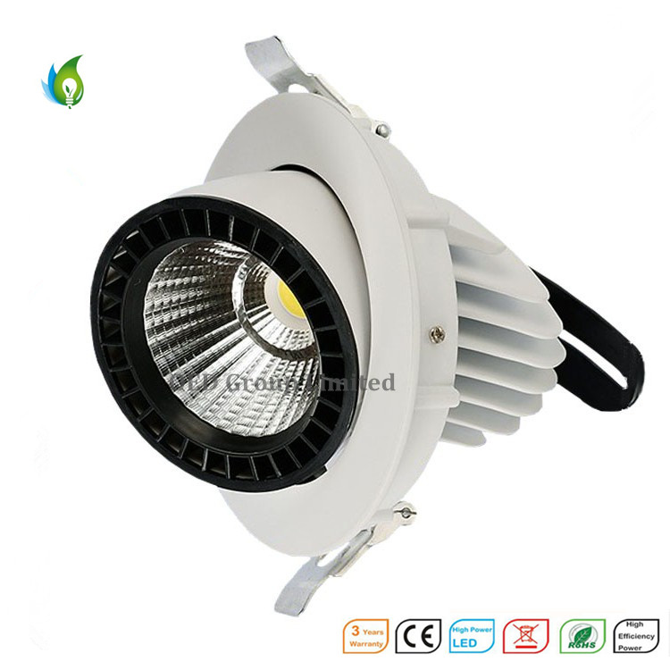 40W High Lumen 85-265V AC 3 Years Warranty Trunk LED Lightings with Factory Price