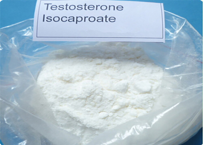 Injectable Anabolic Steroids Test I Testosterone Isocaproate