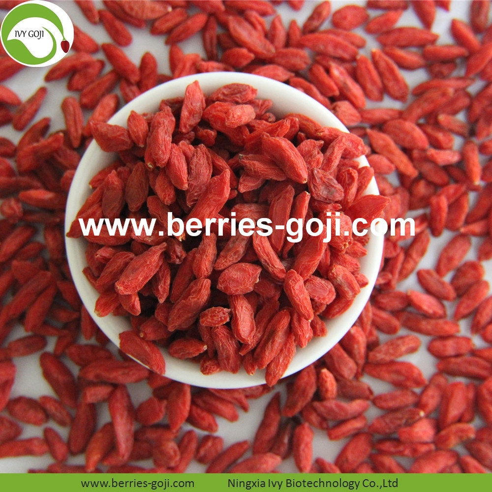 Factory Supply Dried Red Lycium