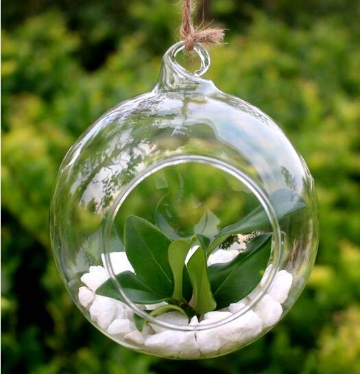 hanging glass terrarium with three holes