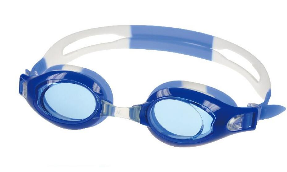 Swim Goggles for Swimming, No Leaking Anti Fog UV Protection, Come with Protection Case, Adjustable