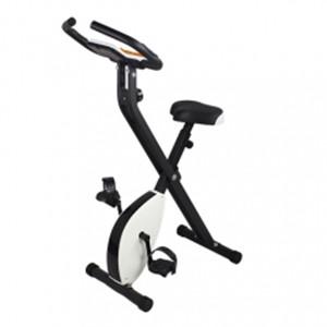 X-Bike Exercise Bike
