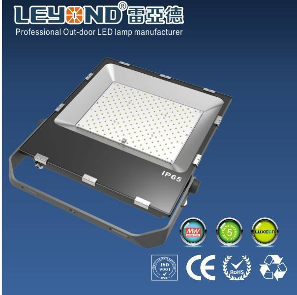 Slimline LED Flood Light with Philips led and MEANWELL DRIVER