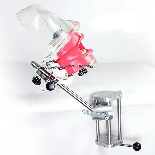 simple simulator manikin hyginen dental models training/Training Techniques Models