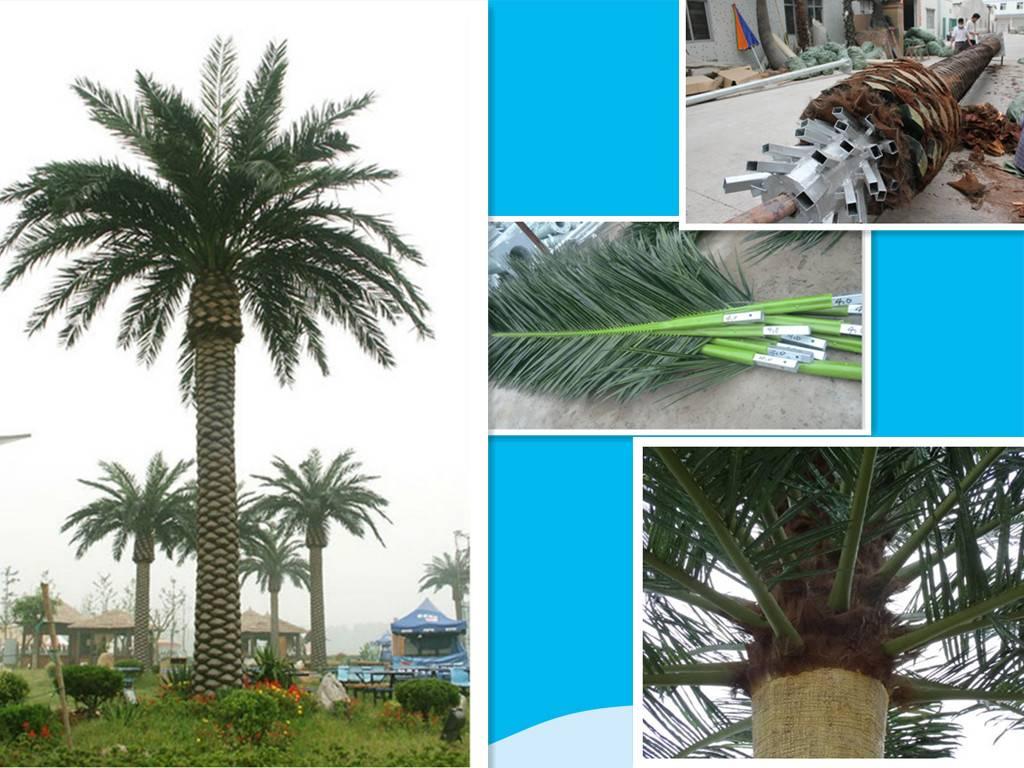 palm tree communication  tower