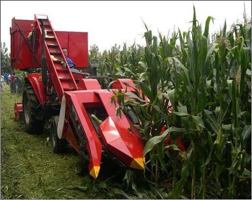 corn combine harvester(4YW-2 )