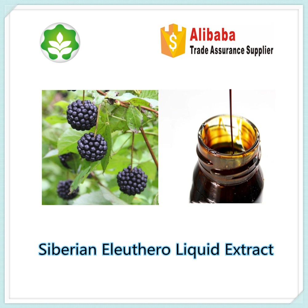 siberian ginseng liquid extract used for energetic beverage