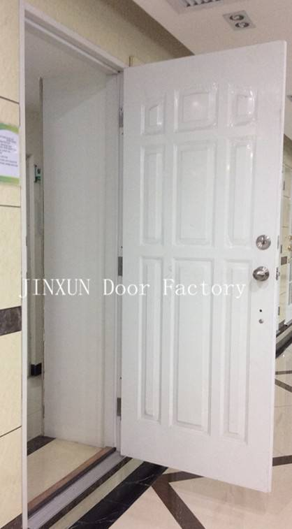American Style Nine Panel Steel Doors with Frame