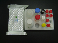 Porcine Parvovirus ELISA test Kit