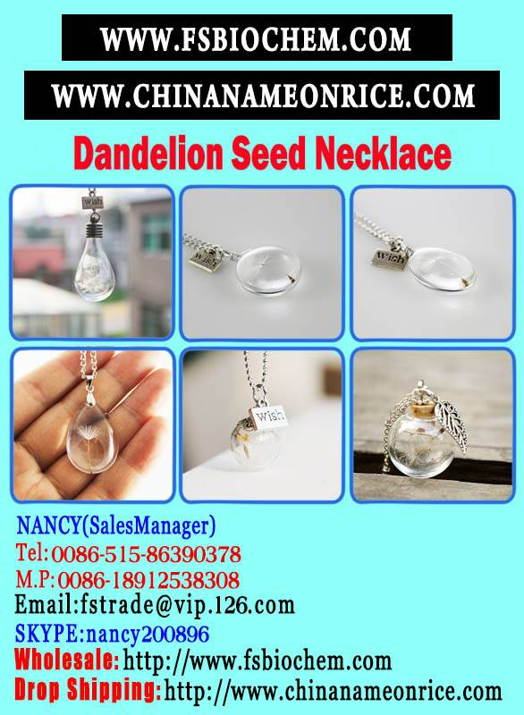 Make a Wish Necklace with Dandelion Seeds,