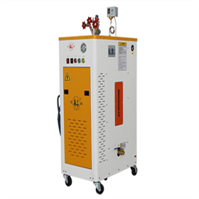 3 kw automatic heating steam generator