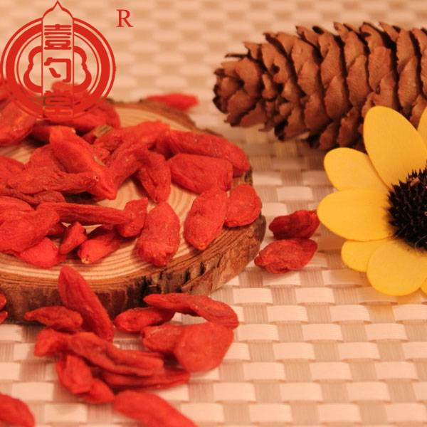 Free samples goji berry ningxia goji berry