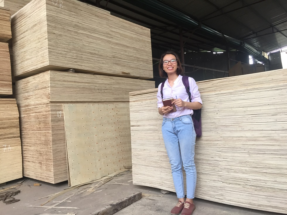 2.5 - 17mm Plywood for Packing