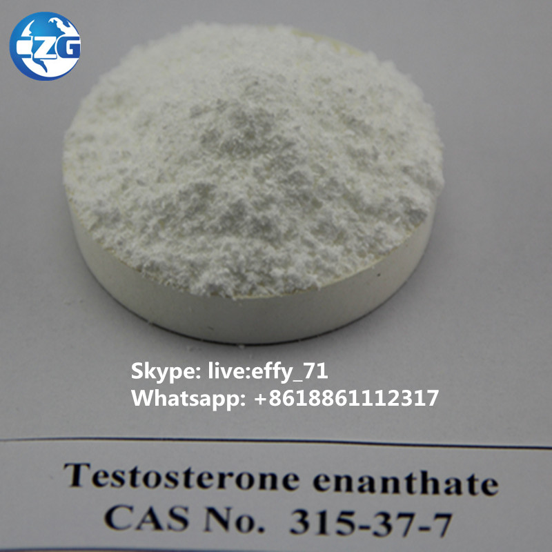 99% purity CAS:315-37-7 Testosterone Enanthate anabolic steroid powder