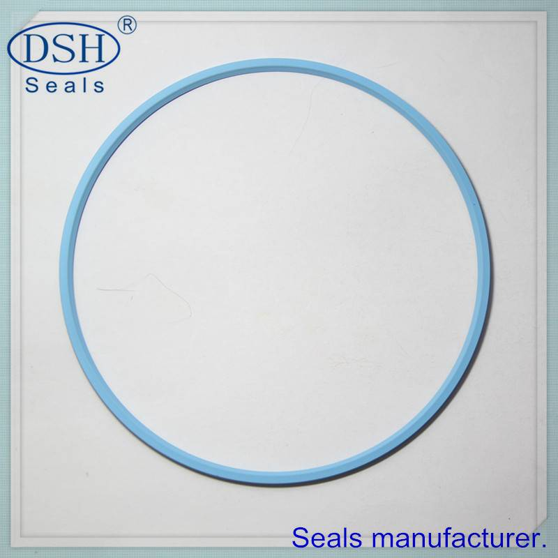 Spring energized teflon ptfe seals China