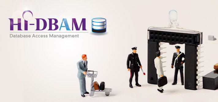 HI-DBAM Database Access Control