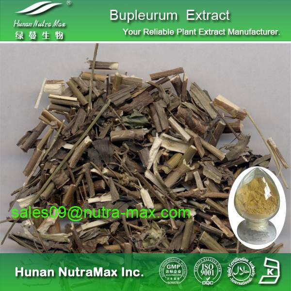 Bupleurum Extract Powder