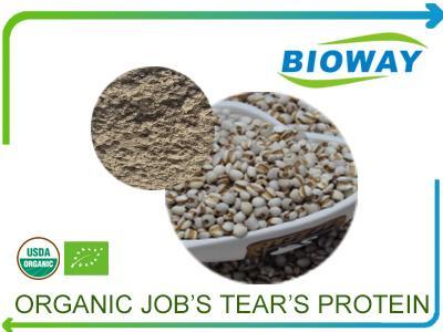 Organic Job's Tears Protein