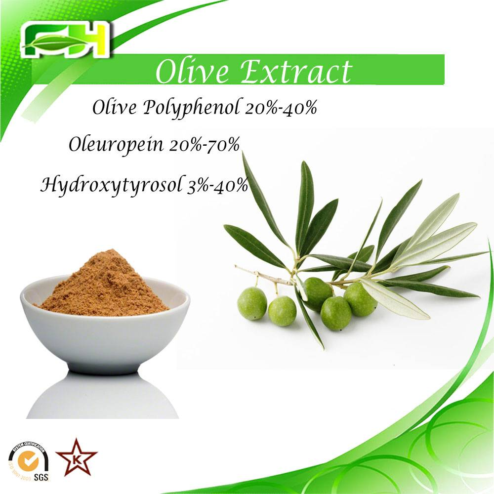 Factory Supply Olive Extract