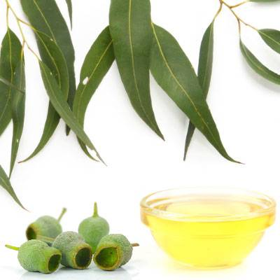 Gumleaf Oil 200ml